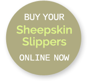 Buy NZ Sheepskin Slippers Online